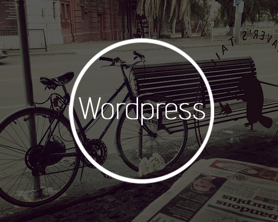 WordPress Pre-made Theme Customization